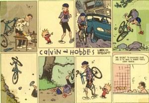 Calvin&Hobbes_work-hobby_sm