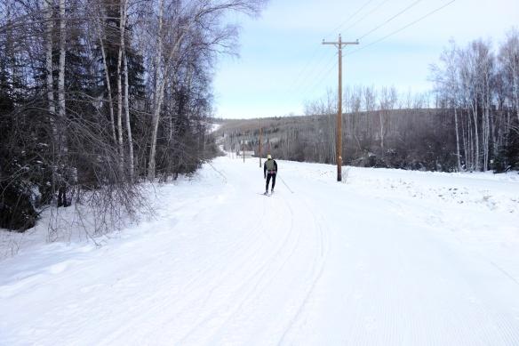 Trail on West Side of Ski Road