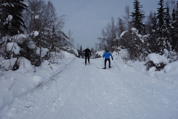 trail to 20 km turnaround from Chena River sm