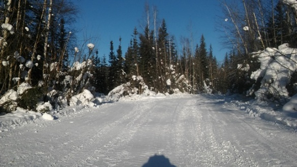 20 km turnaround on 1 March sm